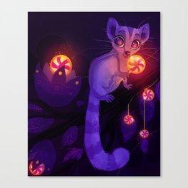 Sugarglider Canvas Print