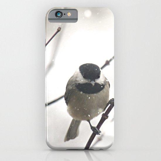 Chickadee in Winter iPhone & iPod Case