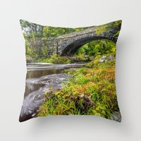 beaver Throw Pillows featuring Beaver Bridge by Adrian Evans