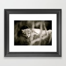 Nature's Finest Peace Framed Art Print