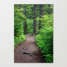 Oregon Trail Canvas Print