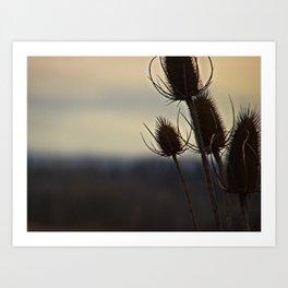 Weeds Art Print