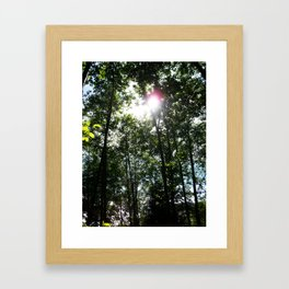 Afternoon Sun • Northpointe Fitness Park & Nature Trails • Marysville, WA Framed Art Print