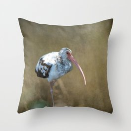 Fledgling Ibis  Throw Pillow
