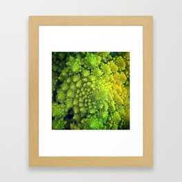 Living Fractals Framed Art Print