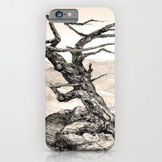 BRISTLECONE PINE iPhone 6s Slim Case