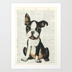Boston Terrier Vintage Puppy Art Print
