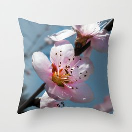 Peach Blossom Blue Sky Throw Pillow