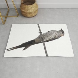 Red-Rumped Swallow Vector Background Removed Rug