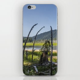 An Audience with the Elders iPhone Skin