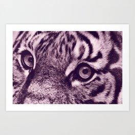 Eyes of the Tiger II Art Print