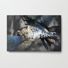 Leopard Boudoir II Metal Print