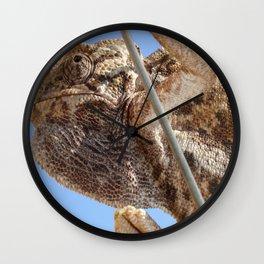 Close Up Of A Climbing Chameleon Wall Clock