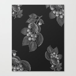 CHERRYS Canvas Print