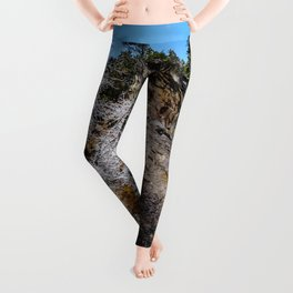 Tamanawas freshly coated Leggings