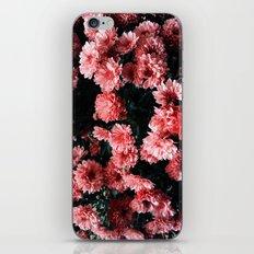 Flowers / Atchison, KS iPhone & iPod Skin
