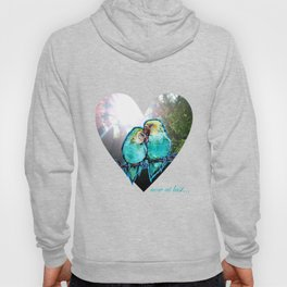 Now At Last...We Found Love - lovebirds nature photo/painting collage Hoody