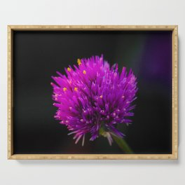 Purple Flower Spike by Reay of Light Photography Serving Tray