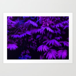 Purpleitis Art Print