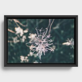 Beauty in Death Framed Canvas