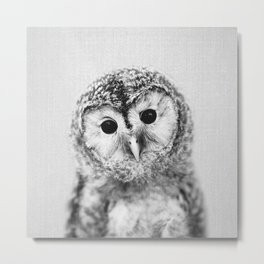 Baby Owl - Black & White Metal Print