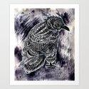 Raven by bioworkz