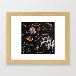 PLANKTON Framed Art Print