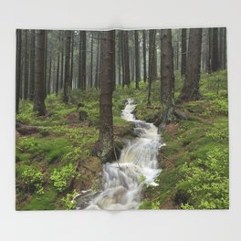 Water always flows downhill Throw Blanket