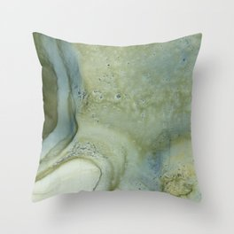 Relief Map 3 Throw Pillow