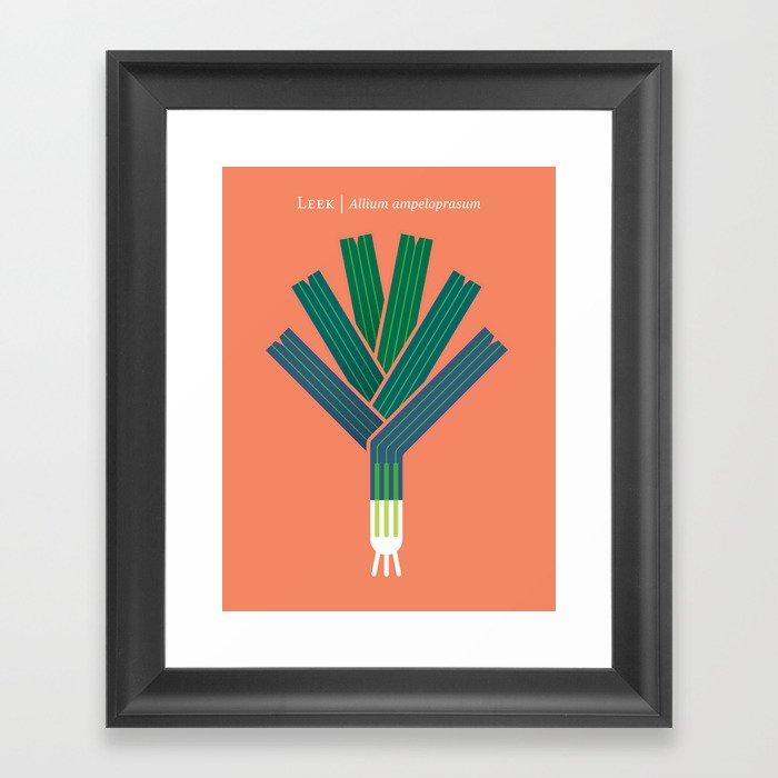 Vegetable: Leek Gerahmter Kunstdruck