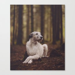 Sheelagh Canvas Print