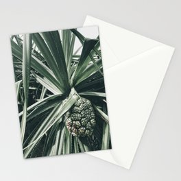 Natural Background 73 Stationery Cards