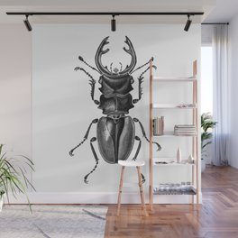 Beetle 17 Wall Mural