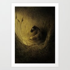Kelpie Art Print