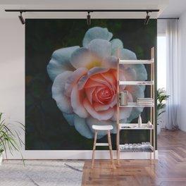 Favorite Rose -Queen Mary's Rose Garden Wall Mural