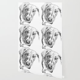 Dachshund Portrait in Black and White Wallpaper