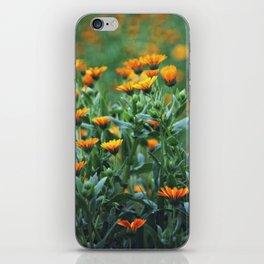 Orange Flowers #1 iPhone Skin