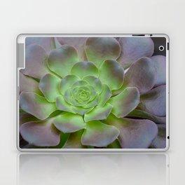 Hens and chicks cactus Laptop & iPad Skin