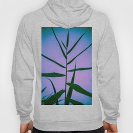 Reach to the Sky at Sunset 4 Hoody