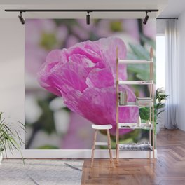 Pink Musk Mallow Rolled-up Wall Mural