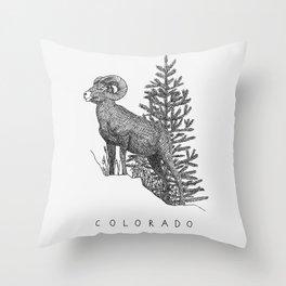 COLORADO STATE Throw Pillow