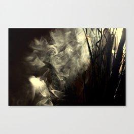 Sunlight, shadows and smoke. Canvas Print