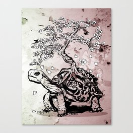 Turtle with a bonsai on the carapace Canvas Print