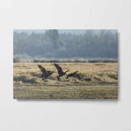 The Takeoff, No. 2 Metal Print