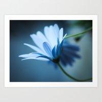 Light Blue Flower Art Print