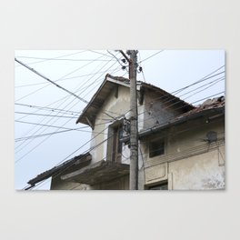 Trying to stay connected Canvas Print