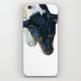 Swedish farm dog iPhone Skin