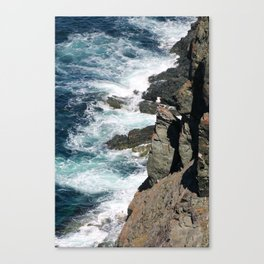 T00 close to the edge Canvas Print