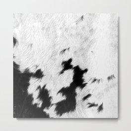 Spotted Cowhide Metal Print