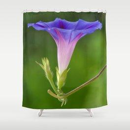 Lightened  Shower Curtain